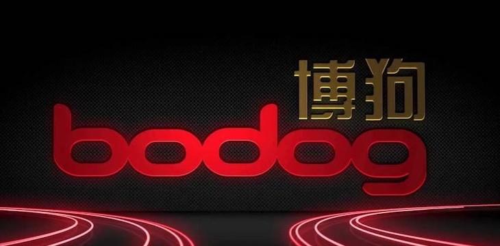 Bodog Poker conquista el mercado asiático trabajando con 8 países